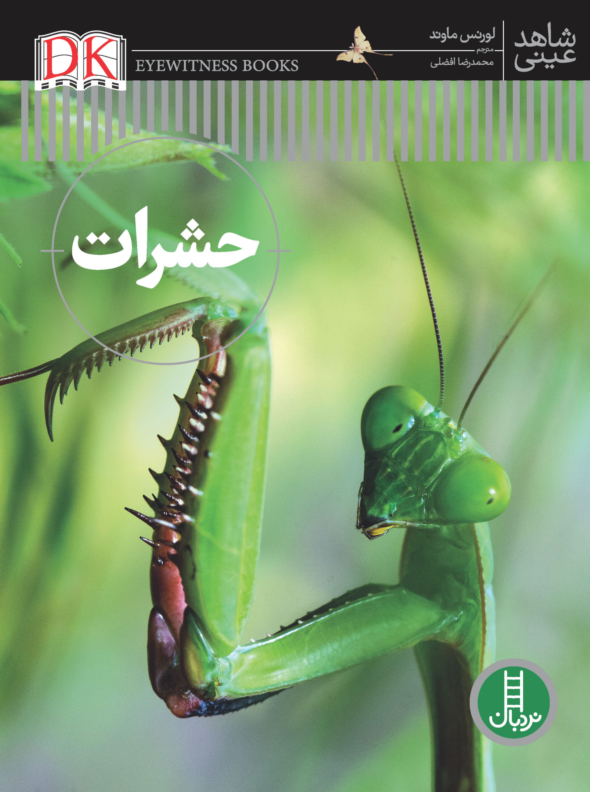 حشرات (شاهد عینی)